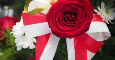 Obchody Narodowego Dnia Niepodległości